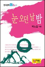 눈 오던 날 밤 - 한국문학 Best